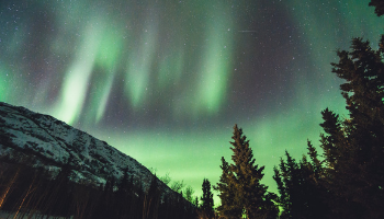 How to immigrate to Yukon: top tips in 2021