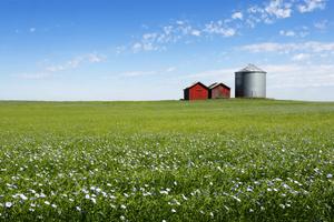 farm in manitoba